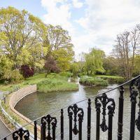 A3 dog-friendly pub and dog walk near Farnham, Surrey - Surrey dog-friendly pub and dog walk