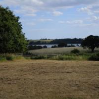 Levington dog-friendly pub and dog walk, Suffolk - Dog walks in Suffolk