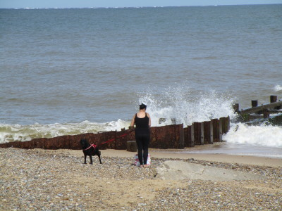 Gunton Denes dog-friendly beach, Suffolk - Driving with Dogs