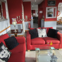 M5 Junction 20 dog-friendly pub and dog walks, Somerset