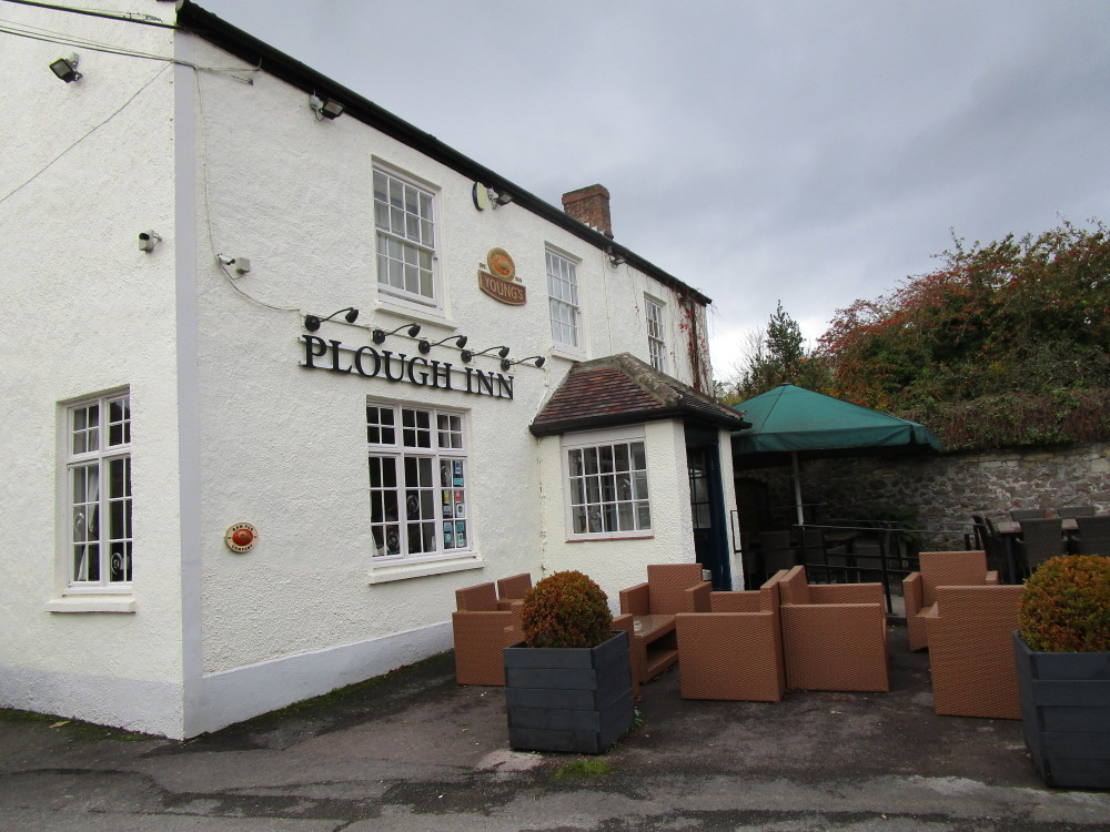 A38 dog-friendly pub and dog walk, Somerset - Dog walks in Somerset