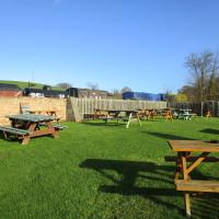 Washford dog-friendly pub off the A39, Somerset - Dog walks in Somerset