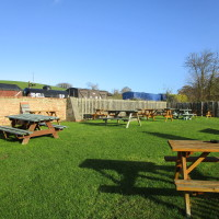 Washford dog-friendly pub off the A39, Somerset - Dog walks in Somerset