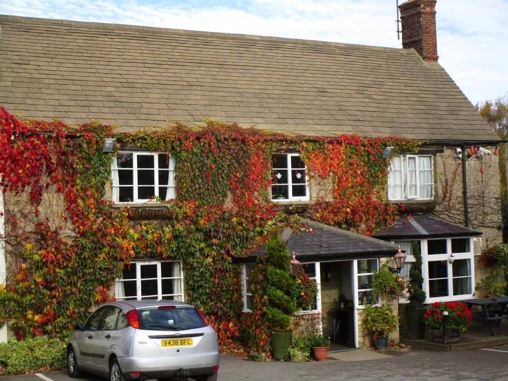 M40 Junction 10 dog walk with dog-friendly pub, Oxfordshire - Dog walks in Oxfordshire