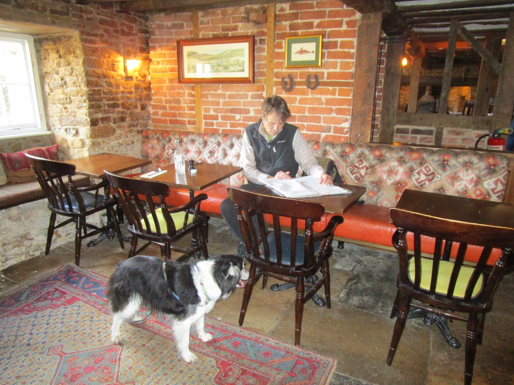 Countryside dog-friendly pub and dog walk, Oxfordshire - Dog walks in Oxfordshire