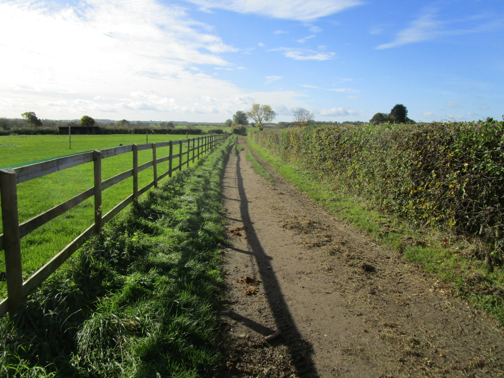 White Horse dog-friendly pub and dog walk, Oxfordshire - Dog walks in Oxfordshire