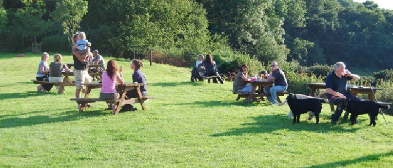A350 dog walk and dog-friendly pub near Shaftesbury, Wiltshire - Wiltshire dog friendly pub and dog walk