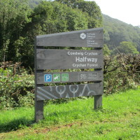 A40 dog walk near Llandovery, Carmarthenshire, Wales - Dog walks in Wales