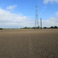 A435 near Alcester dog-friendly pub and dog walk, Warwickshire - Dog walks in Warwickshire
