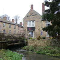 Woodstock dog-friendly pub and dog walk, Oxfordshire - Dog walks in Oxfordshire