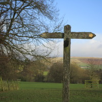 Dog-friendly pub and dog walk near Congleton, Cheshire - Dog walks in Cheshire
