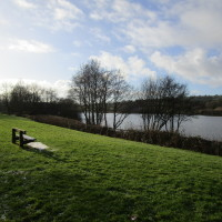 Meerbrook dog-friendly pub and dog walk, Staffordshire - Dog walks in Staffordshire
