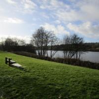 Meerbrook dog-friendly pub and dog walk, Staffordshire - Dog walks in Staffordshire