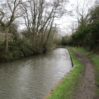 Canalside dog walk with dog-friendly pub, Warwickshire - Dog walks in Warwickshire