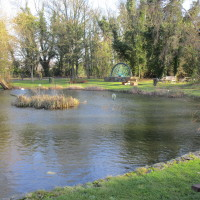 A5 dog-friendly pub, Warwickshire - Dog walks in Warwickshire