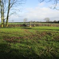 A5 dog-friendly pub and dog walk, Leicestershire - Dog walks in Leicestershire