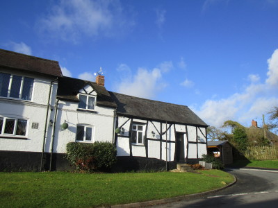 A45 dog-friendly pub and dog walk, Warwickshire - Driving with Dogs