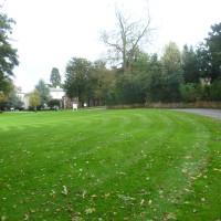 A45 dog-friendly pub and dog walk, West Midlands - Dog walks in the West Midlands