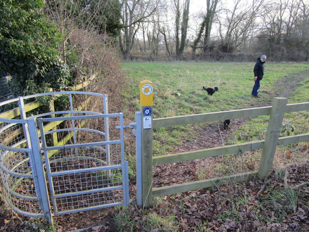 M42 J9 dog friendly pub and dog walk, Warwickshire - Dog walks in Warwickshire