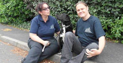 Paw Pals Eastbourne & Hailsham, East Sussex - Driving with Dogs