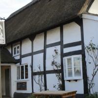 A44 dog-friendly pub and short dog walk near Pershore, Worcestershire - Dog walks in Worcestershire
