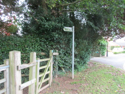 A448 dog-friendly pub and dog walk, Worcestershire - Driving with Dogs
