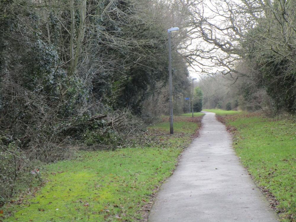 Redditch dog-friendly pub and dog walk, Worcestershire - Dog walks in Worcestershire