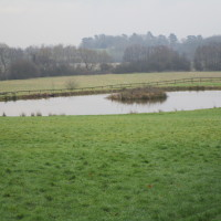 A435 near Studley dog-friendly pub and walk, Warwickshire - Dog walks in Warwickshire