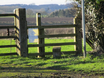 Staverton dog-friendly pub and dog walk, Northamptonshire - Driving with Dogs