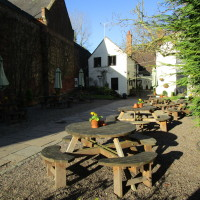 Enville dog-friendly pub and dog walk, Staffordshire