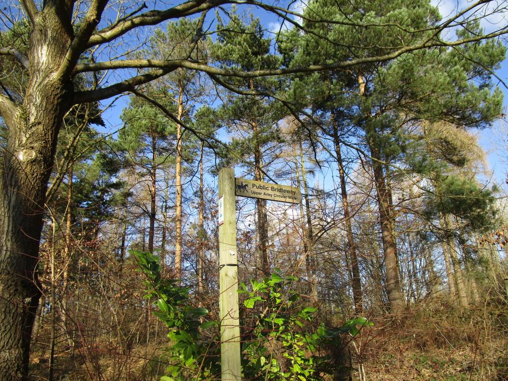 A442 reservoir dog walk, Worcestershire - Dog walks in Worcestershire