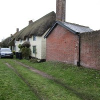 A352 dog-friendly pub and dog walk, Dorset - IMG_6493.JPG
