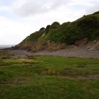 M5 Junction 21 Sand point dog-friendly beach near Weston, Somerset - Dog walks in Somerset
