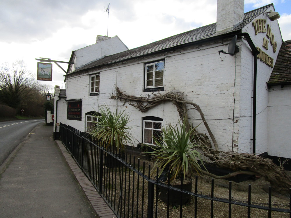 A451 dog-friendly pub and walk, Worcestershire - Dog walks in Worcestershire