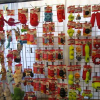 That Pet Place in Alcester, Warwickshire - Image 2