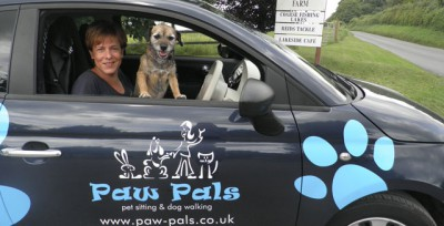 Paw Pals Salisbury, Wiltshire - Driving with Dogs