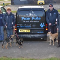 Paw Pals Stockton-on-Tees, County Durham - Image 1