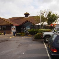 Sedgemoor Services dog walk, Somerset - Dog walks in Somerset