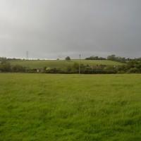 M5 Junction 23 dog-friendly pub and dog walk in Bawdrip, Somerset - Dog walks in Somerset