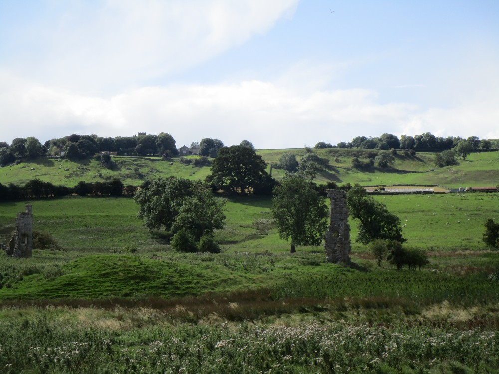 Holmedale Valley dog walk and dog-friendly pub, North Yorkshire - Yorkshire Dales National Park dog walks