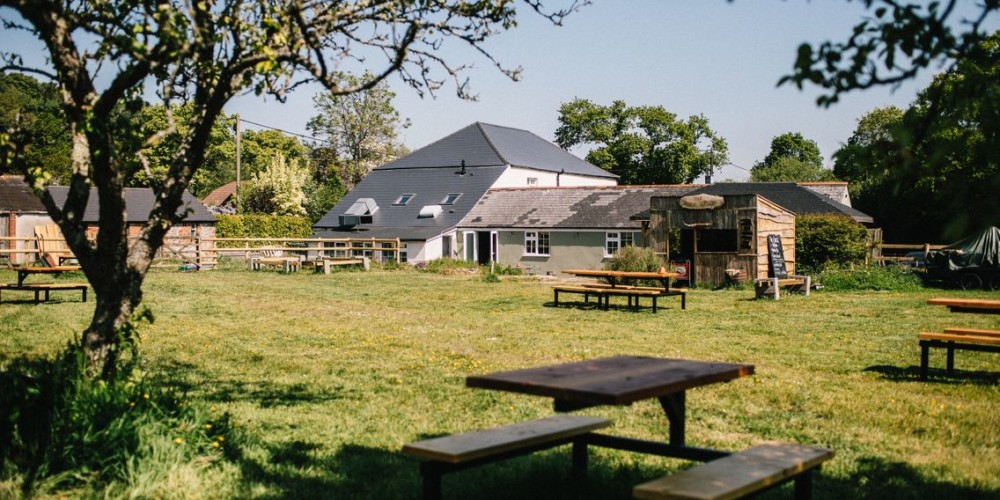 Bladeley dog walk and dog-friendly pub, Dorset - Dorset dog-friendly pub and dog walk