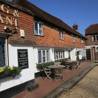 A286 dog-friendly inn and dog walk near Haslemere, Surrey - Surrey dog walks and dog-friendly pubs.JPG