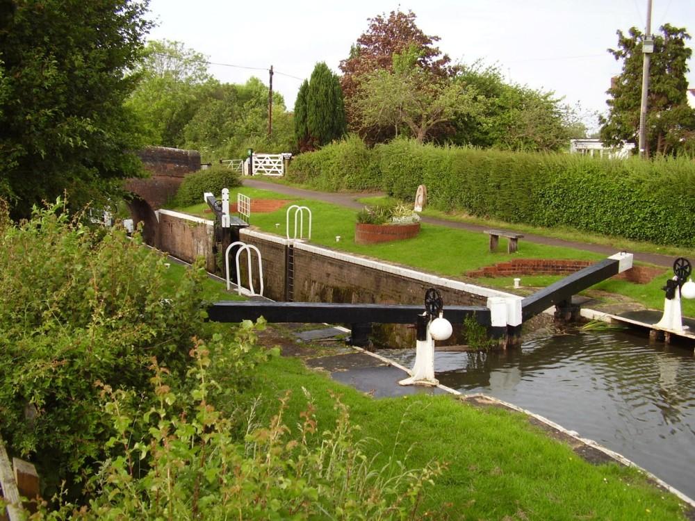 M5 Junction 24 dog walk and tea-rooms, Somerset - Dog walks in Somerset
