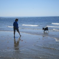 Dog-friendly beach with holiday village and pub, Wales - Wales dog-friendly beaches and pubs.JPG