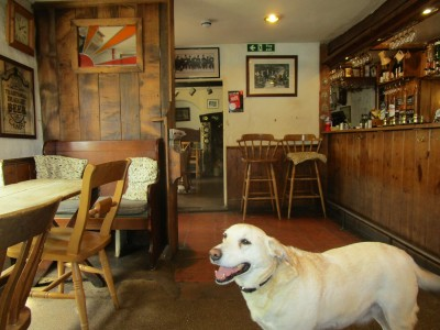 M5 Jct 28 dog-friendly pub with B&B, Devon - Driving with Dogs