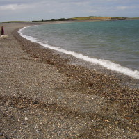 Cemlyn dog-friendly beach walk, Anglesey, Wales - Dog walks in Wales