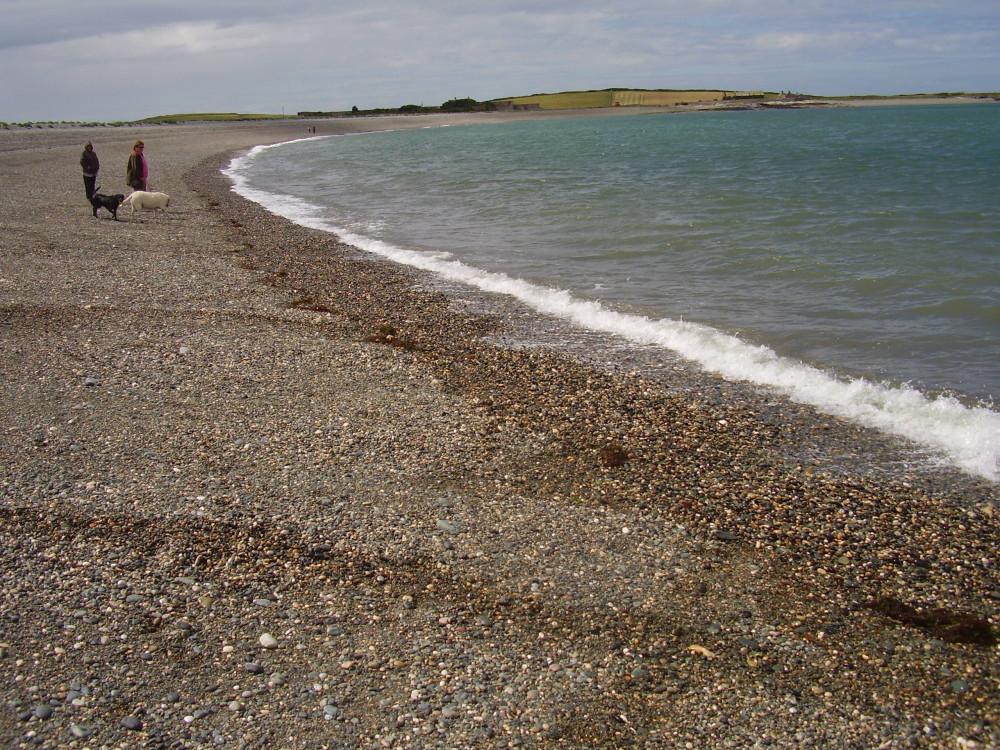 Cemlyn dog-friendly beach walk, Anglesey, Wales - Dog walks in Wales