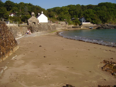 Small dog-friendly beach, Pembrokeshire, Wales - Driving with Dogs