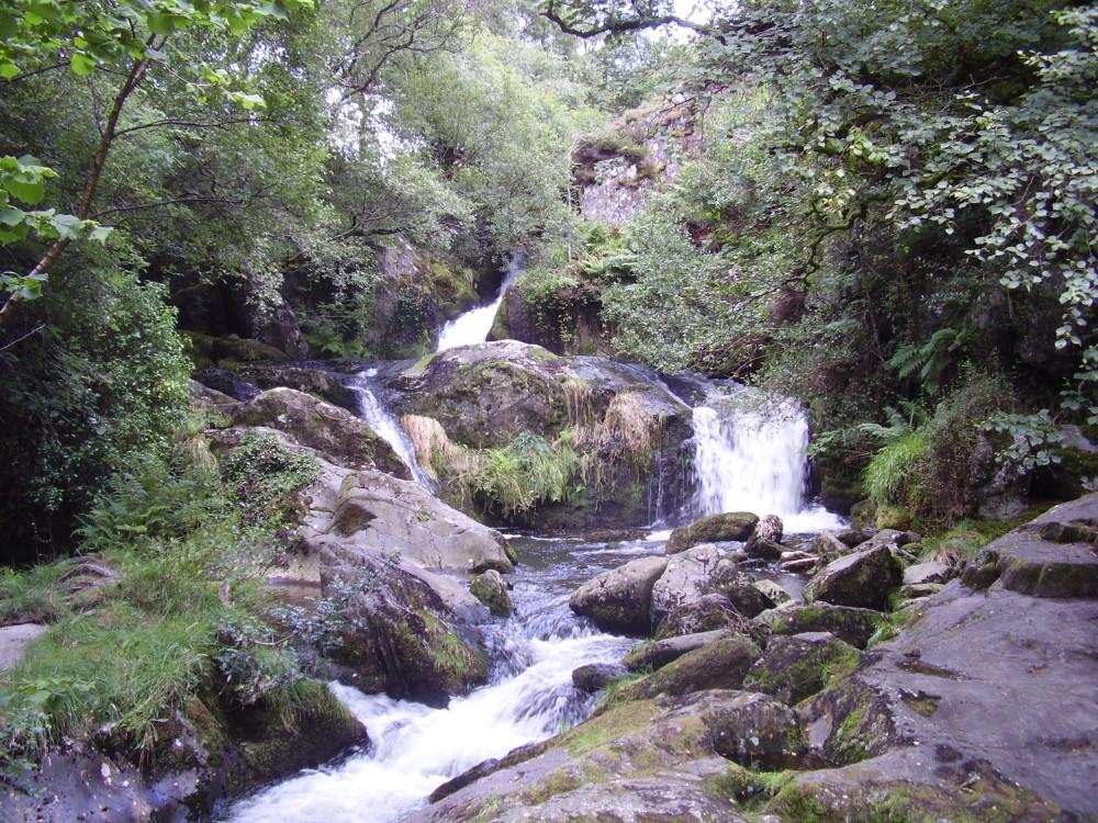 Picturesque dog walk near Tywyn, Gwynedd, Wales - Dog walks in Wales