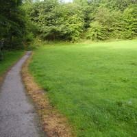 Wrexham dog walk, Clwyd, Wales - Dog walks in Wales